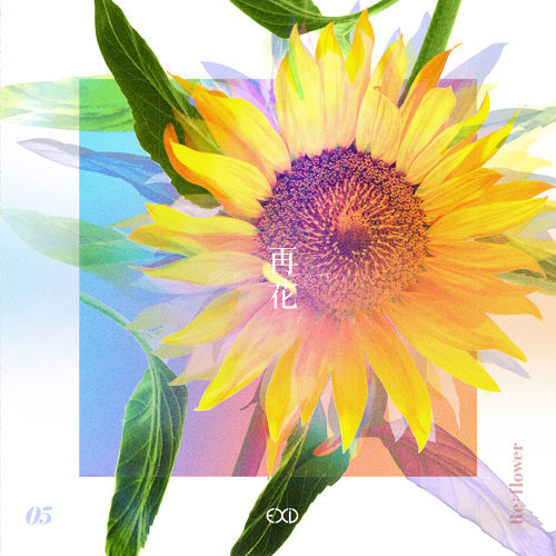 [Re:flower] PROJECT #5