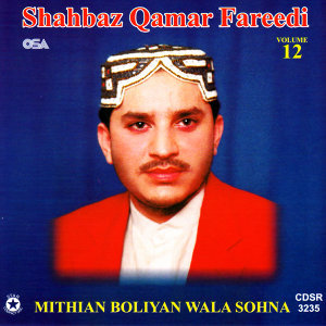 Mithian Boliyan Wala Sohna Vol. 12