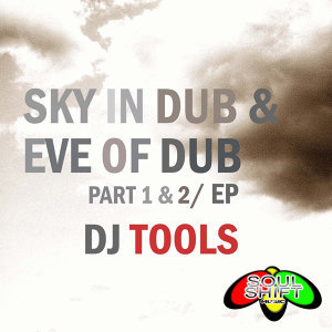 Soul Shift Music: Sky In Dub (DJ Tools)