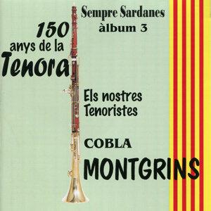 Cobla Montgrins: 150 anys de la Tenora