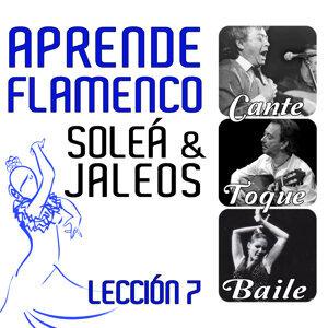 Aprende Flamenco. Soleá y Jaleos. Lección 7