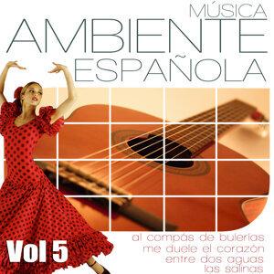 Musica Ambiente Española. Flauta, Guitarra y Compas Flamenco. Vol 5