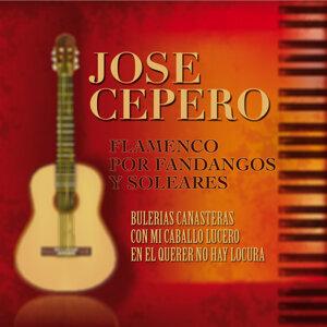 Flamenco Por Fandangos y Soleares