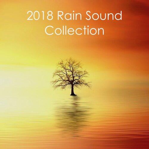 Meditation Zen Master, Rain Sounds Nature Collection, Rain Sounds