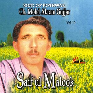 Saif Ul Malook Vol. 19 - Pothwari Ashairs