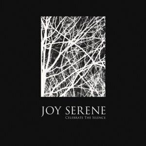 Celebrate The Silence (single)