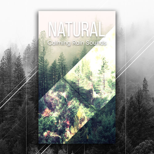 Relaxation Nature Sounds Calming Rain — BCMA
