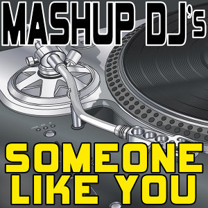 Someone Like You (Remix Tools for Mash-Ups)
