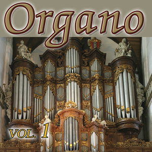Organo Latino Vol.1
