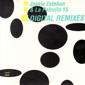 Digital Remixes