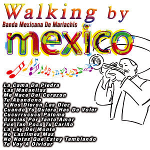 Walking By Mexico