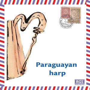 Paraguayan Harp