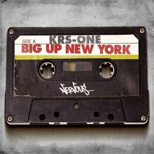 Big Up New York
