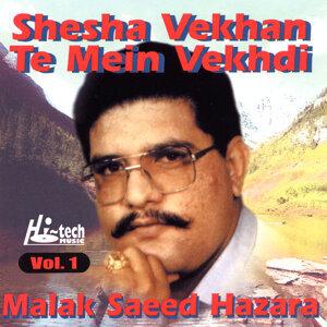 Shesha Vekhan Te Mein Vekhdi Vol. 1 (Mahiye)