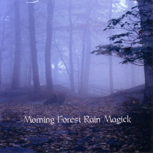 Morning Forest Rain Magick