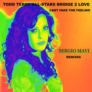 """Can't Fake the Feeling"" Sergio Mavi Remixes"