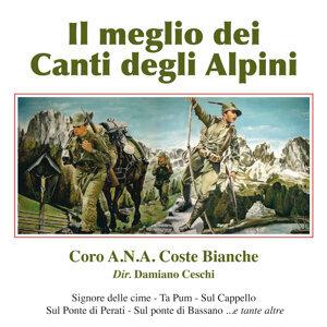 Il Meglio dei Canti degli Alpini