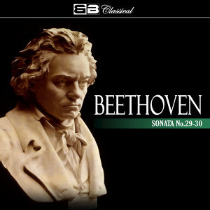 Beethoven Sonata No 29-30