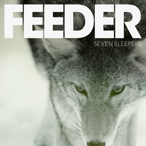 Seven Sleepers