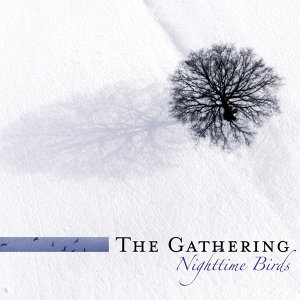 Nighttime Birds (Reissue)