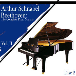 Beethoven: The Complete Piano Sonatas, Vol. II (Disc 2)