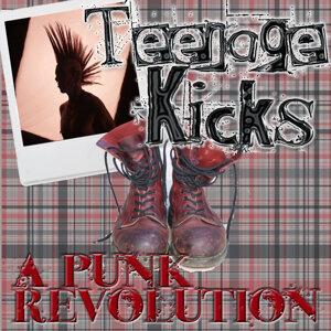 Teenage Kicks: A Punk Revolution
