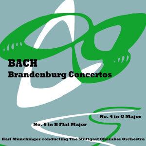 Brandenburg: Concertos 4 & 6