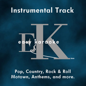 Easy Instrumental Hits, Vol. 89 (Karaoke)