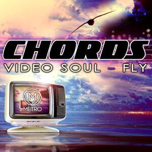 Video Soul / Fly