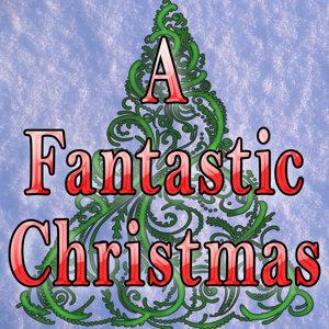 A Fantastic Christmas