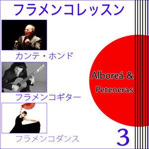 フラメンコレッスン. スペインから . カンテ・ホンド . フラメンコギター .フラメンコダンス . 3