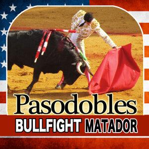 Toreador. Torero and Bull Fight