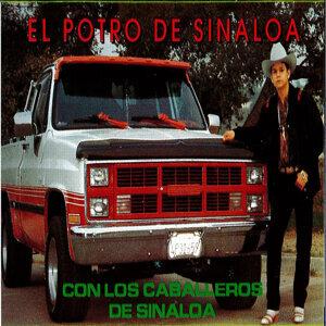 Soy De Puro Sinaloa