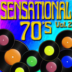 The 70's (Hits Of The 1970's) Vol. 2