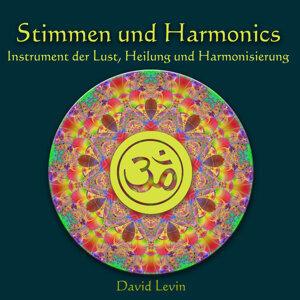 Stimmen und Harmonics Instrument der Lust, Heilung und Harmonisierung
