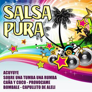 Salsa Pura