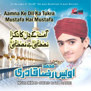 Aamna Ke Dil Ka Tukra Mustafa Hai Mustafa - Islamic Naats