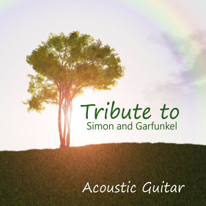 Acoustic Guitar: Tribute to Simon and Garfunkel