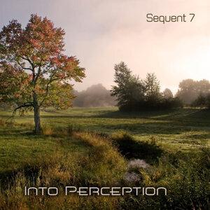 Into Perception