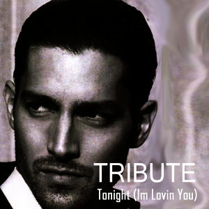 Tonight (I'm Lovin' You) {feat. Ludacris & DJ Frank E} (Enrique Iglesias Tribute)
