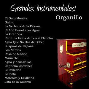 Grandes Instrumentales: Organillo
