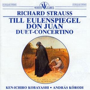 Till Eulenspiegel - Don Huan - Duet-Concertino