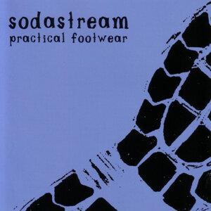 Practical Footwear