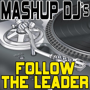 Follow The Leader (Re-Mix Package For DJ's)