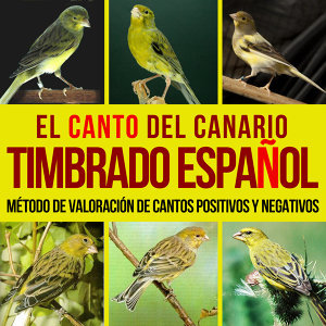 El Canto del Canario Timbrado Español. Método de Valoración de Cantos Positivos y Negativos