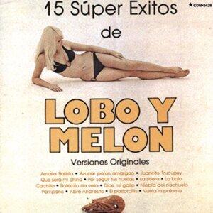 15 Super Exitos De Lobo Y Melon - Versiones Originales