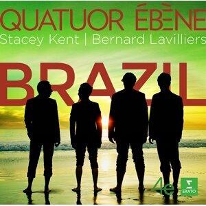 巴西!Brazil!