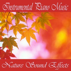 Instrumental Piano Music - Nature Sound Effects