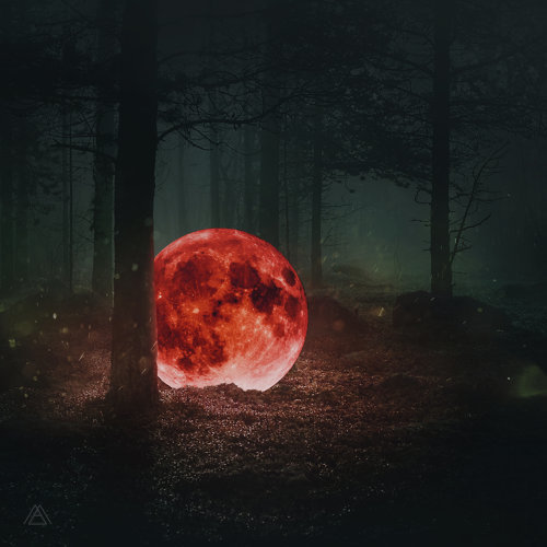 Red Moon: The Piano Forest
