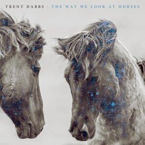 The Way We Look at Horses
